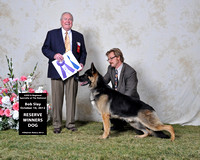 Reserve Winners Dog