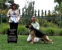 German Shepherd Dog Fanciers of Northern California - Lisa Haus