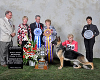 GSDCA National 2010